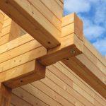 Почему популярны бани из древесины